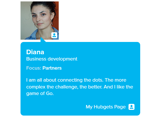 Publish your Hubgets Page on your website